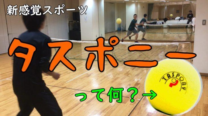 【タスポニー】名古屋で生まれた国産スポーツを徹底解説!