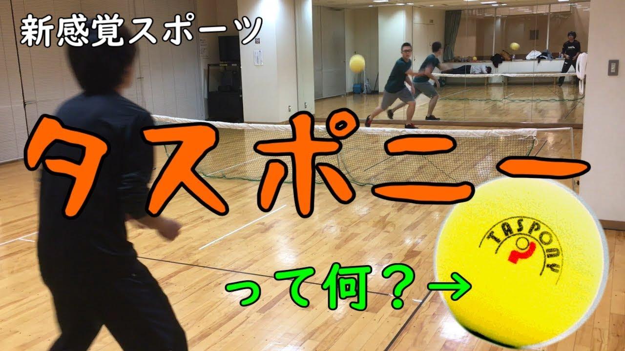 タスポニー|名古屋で生まれた国産スポーツを徹底解説!
