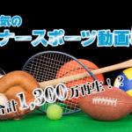 合計1,300万再生!?ワールドマイナースポーツで人気の動画トップ5を大公開!