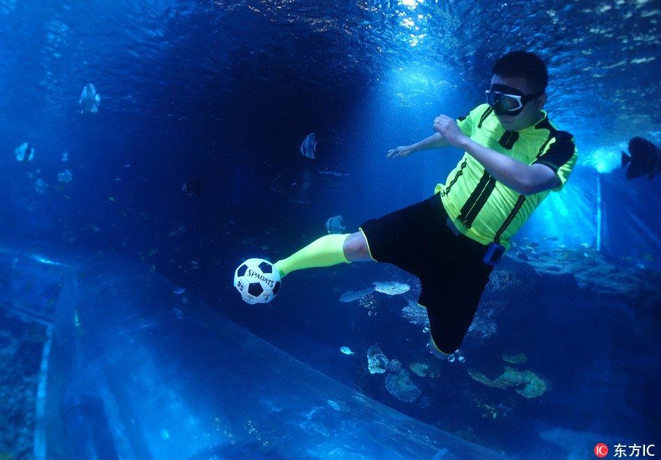 4つの水中マイナースポーツのルールを解説!